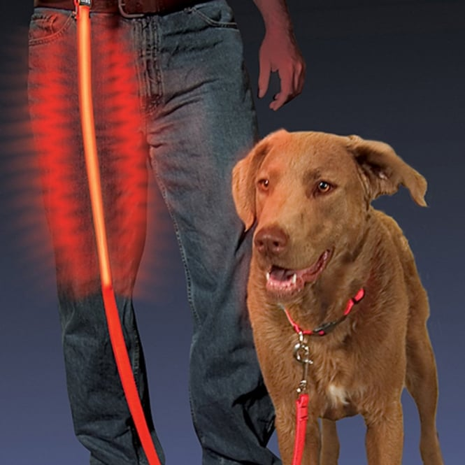 Nite Ize LED Pet Leash Red, Turn your walk in the dark into a safe and visible walk in the park